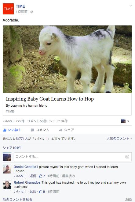 "「Adorableなヤギ」〜Facebookで英語に""慣れる""方法!!"